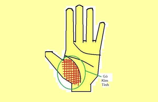 Gò kim tinh trên lòng bàn tay
